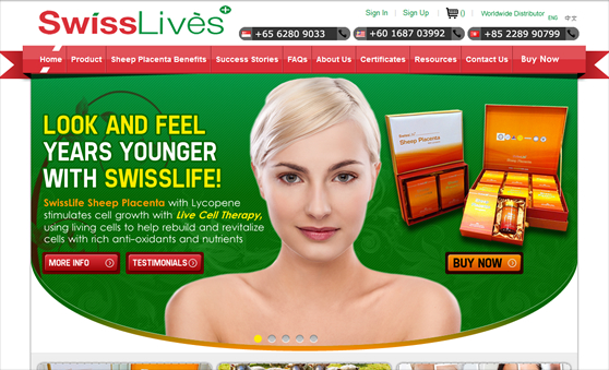 Custom Design Wordpress Website in Singapore