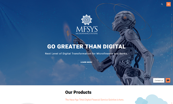 1stfold-web-design-and-development-company-mfsys-portfolio-img